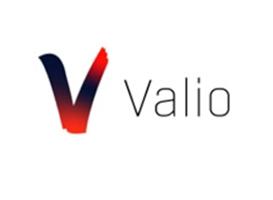 VALIO CONSULTING